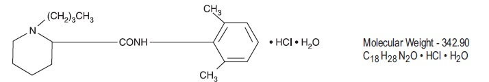 bupivacaine hydrochloride and epinephrine bitartrate (Marcaine)