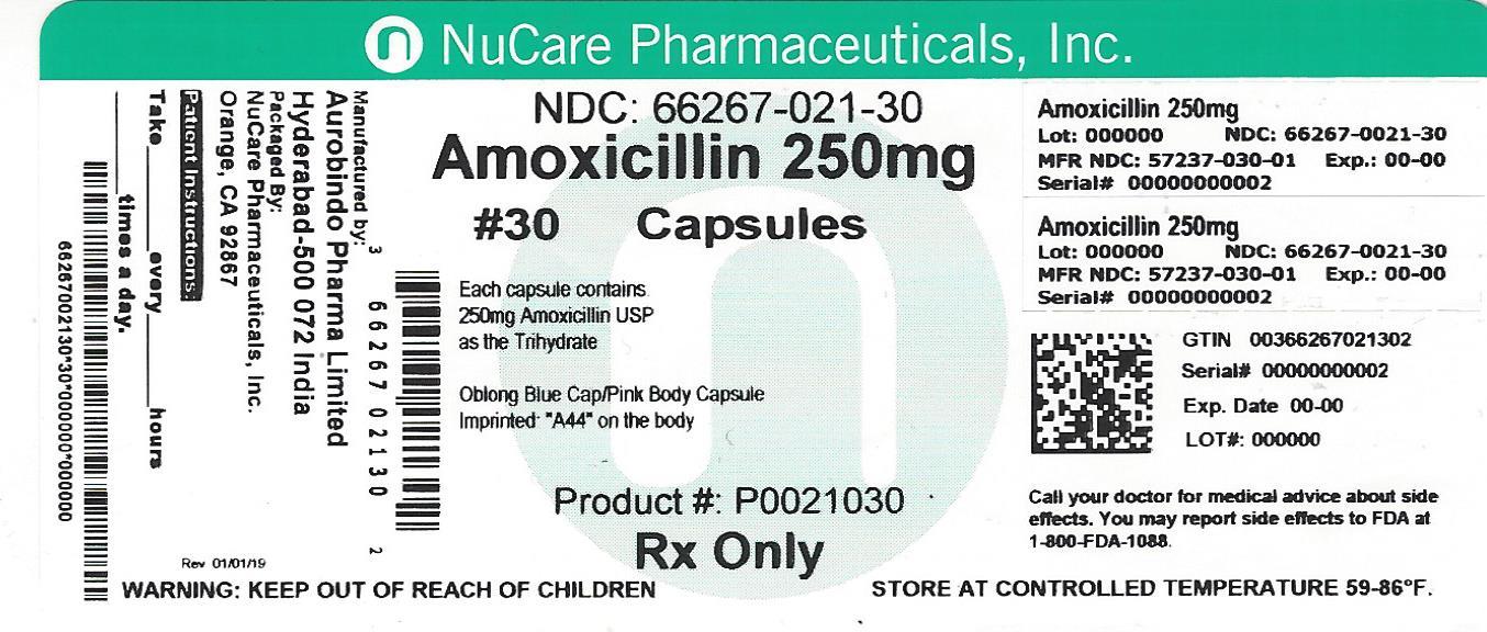 Amoxicillin (Amoxicillin)
