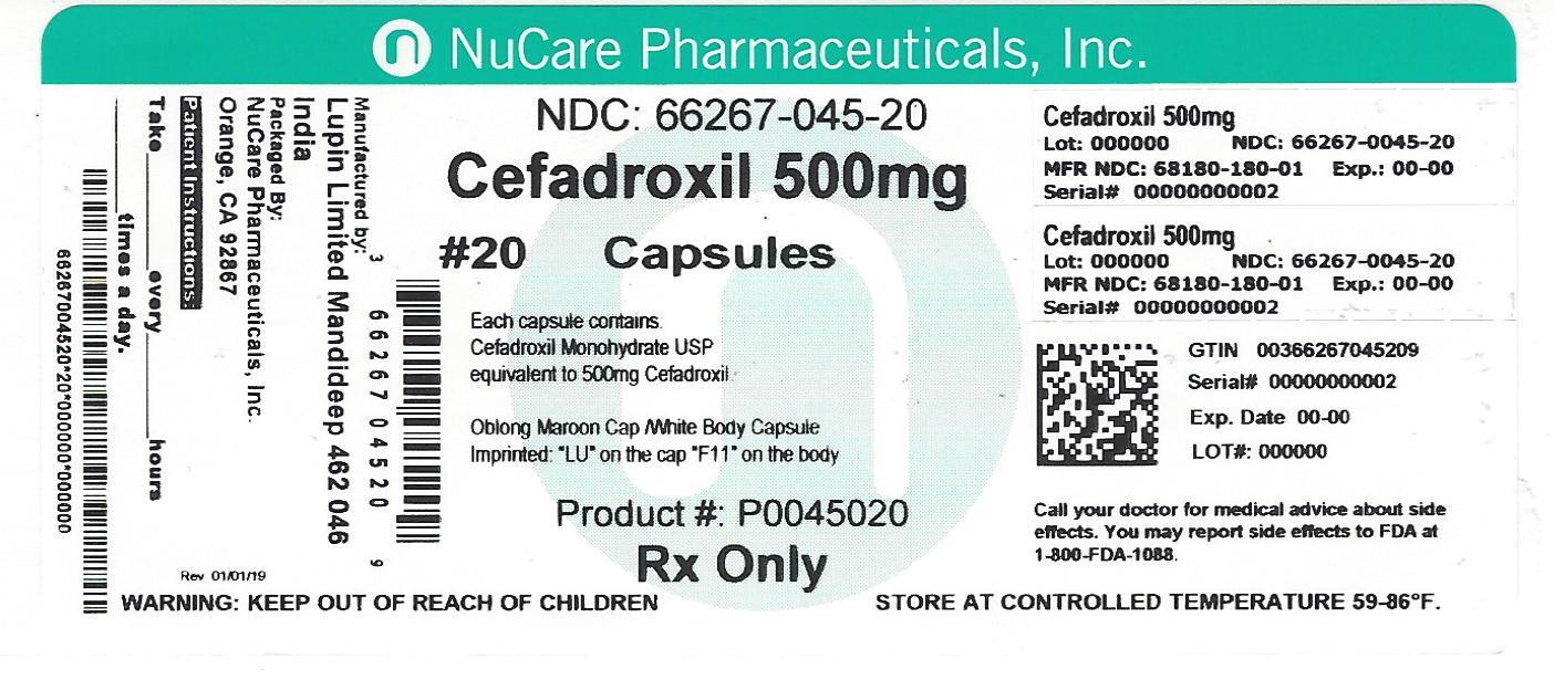 Cefadroxil (Cefadroxil)