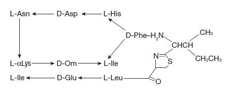 bacitracin zinc and polymyxin b sulfates (polycin)