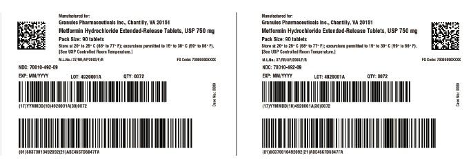 Metformin ER 500 mg (Metformin)