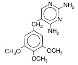Sulfamethoxazole and Trimethoprim (Sulfamethoxazole and Trimethoprim)